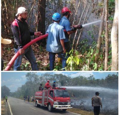 PT Timah Wilayah Kepri dan Riau Sigap Bantu Padamkan Kebakaran Lahan dan Rumah